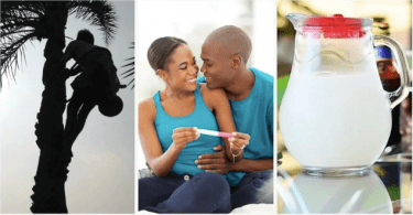 Effects Of Palm Wine On Male And Female Fertility (Must See)