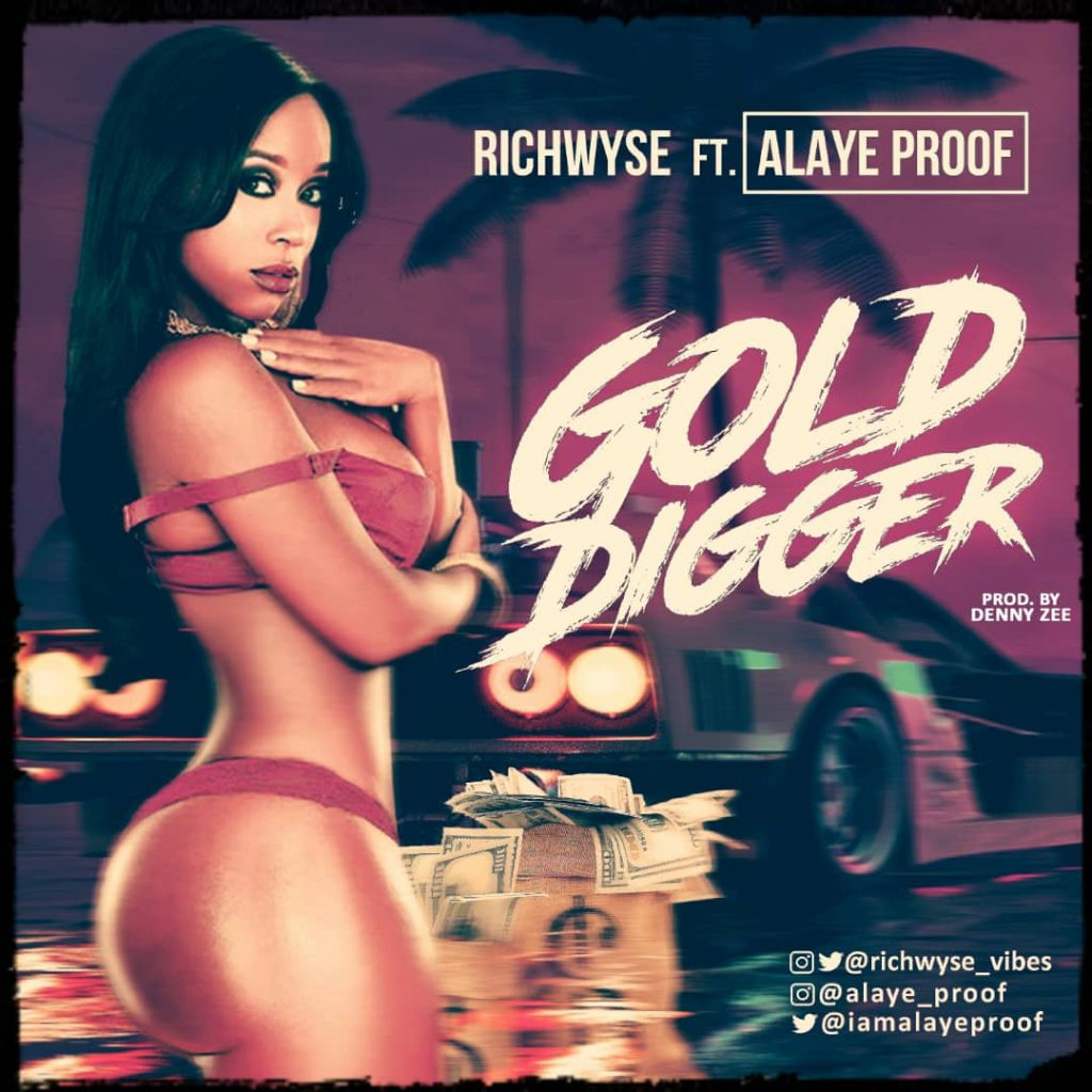 RichWyse ft Alaye Proof - Gold Digger